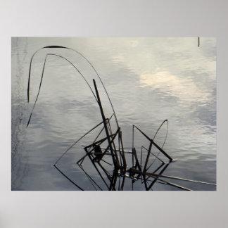 pond reeds print