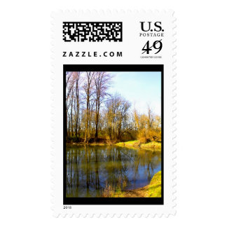 Pond Reflection Stamps
