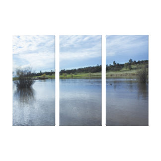 Pond Reflections Canvas Triptych Art
