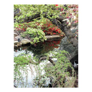 Pond Reflections Letterhead