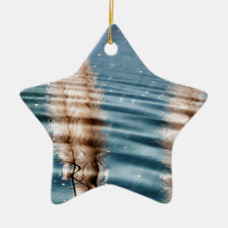 Pond Ripples Ceramic Ornament