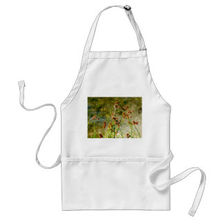 Pond shore plants, spiked puffs on stems photo adult apron