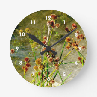 Pond shore plants, spiked puffs on stems photo wall clock