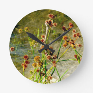 Pond shore plants, spiked puffs on stems photo wall clocks