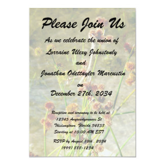 """Pond shore plants, spiked puffs on stems photo 5"""" x 7"""" invitation card"""