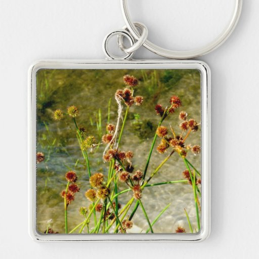 Pond shore plants, spiked puffs on stems photo keychains
