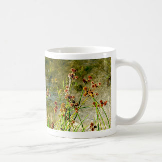 Pond shore plants, spiked puffs on stems photo coffee mugs