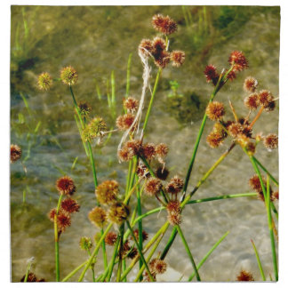 Pond shore plants, spiked puffs on stems photo cloth napkin