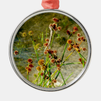 Pond shore plants, spiked puffs on stems photo christmas tree ornament