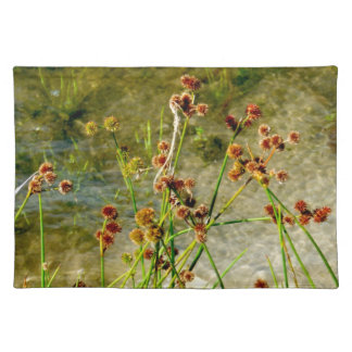Pond shore plants, spiked puffs on stems photo placemats