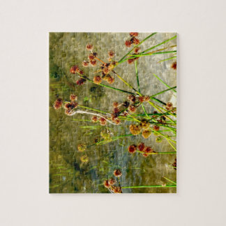 Pond shore plants, spiked puffs on stems photo puzzle