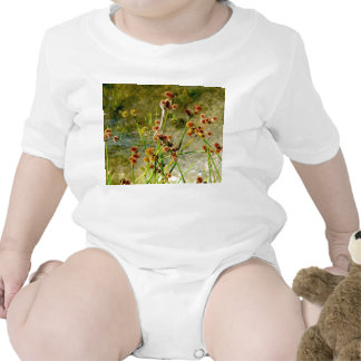 Pond shore plants, spiked puffs on stems photo t-shirt