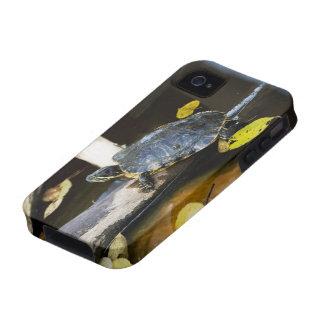 Pond slider turtle in the wild iPhone 4/4S case