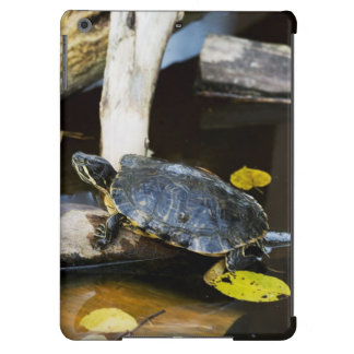 Pond slider turtle in the wild cover for iPad air