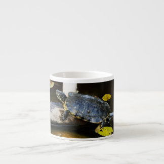 Pond slider turtle in the wild espresso cup