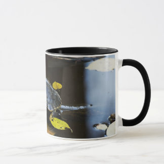 Pond slider turtle in the wild mug