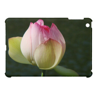 Pond Water Garden Waterlily Flower Floral Lilypads iPad Mini Cases