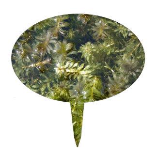 "Pond Weed (or, ""Lush Pond Plantlife"") Cake Topper"