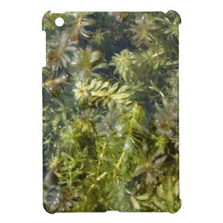 "Pond Weed (or, ""Lush Pond Plantlife"") Case For The iPad Mini"
