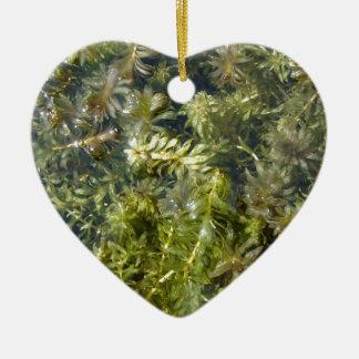 "Pond Weed (or, ""Lush Pond Plantlife"") Ceramic Ornament"