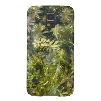 """Pond Weed (or, """"Lush Pond Plantlife"""") Galaxy S5 Case"""