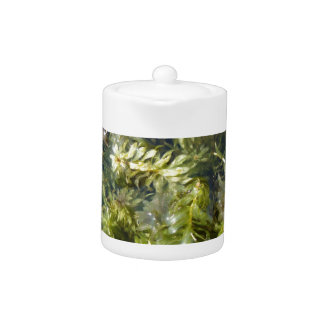 "Pond Weed (or, ""Lush Pond Plantlife"") Teapot"