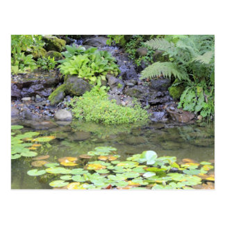 Pond with a Small Waterfall Postcard
