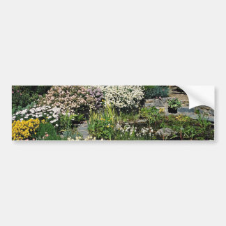 Pond with Cistus and Skanbergh Anthemis copaniana Bumper Stickers