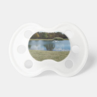 Pond with Fountain Pacifier