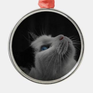 Ponder Kitty Ornament