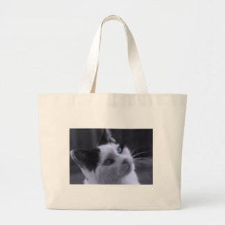 Ponder Kitty Photo Canvas Bags