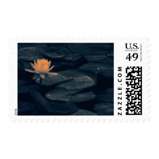 """Pondering At The Pond"" - Postage Stamp"