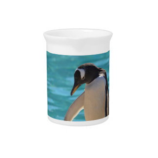 Pondering Penguin Pitcher