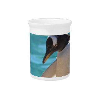 Pondering Penguin Drink Pitcher