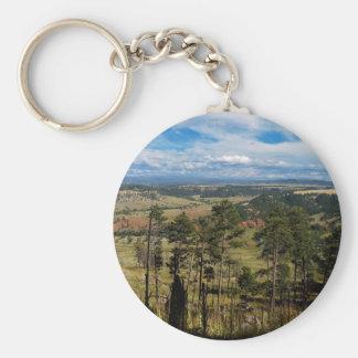 Ponderosa Pine from Devils Tower