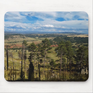 Ponderosa Pine from Devils Tower Mouse Pad