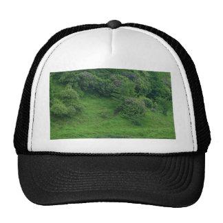 Ponds Bushes Trails Trucker Hats