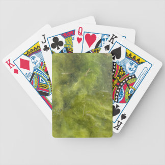 Pondscum Bicycle Playing Cards