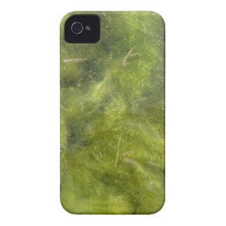 Pondscum iPhone 4 Case-Mate Case