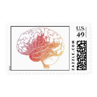 Pone letras al cerebro sellos