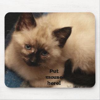 ¡Ponga el ratón aquí! Alfombrilla De Raton