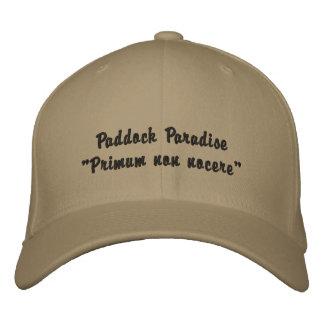 Ponga la gorra de béisbol del nocere en un cercado