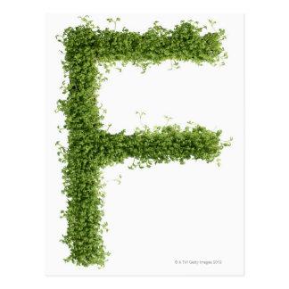 """Ponga letras a """"F"""" en berro en el fondo blanco, Tarjeta Postal"""