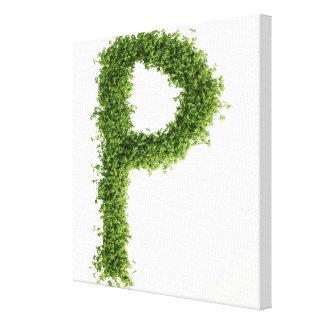 """Ponga letras a """"P"""" en berro en el fondo blanco, Impresión En Tela"""