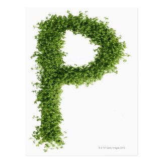 """Ponga letras a """"P"""" en berro en el fondo blanco, Postal"""