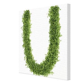 """Ponga letras a """"U"""" en berro en el fondo blanco, Impresión En Tela"""