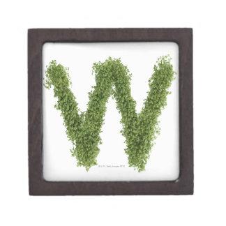 """Ponga letras a """"W"""" en berro en el fondo blanco, Caja De Joyas De Calidad"""