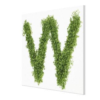 """Ponga letras a """"W"""" en berro en el fondo blanco, Lienzo Envuelto Para Galerias"""