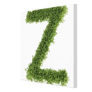 """Ponga letras a """"Z"""" en berro en el fondo blanco, 2 Impresiones En Lienzo Estiradas"""