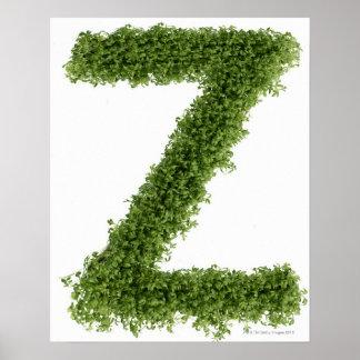 """Ponga letras a """"Z"""" en berro en el fondo blanco, 2 Póster"""